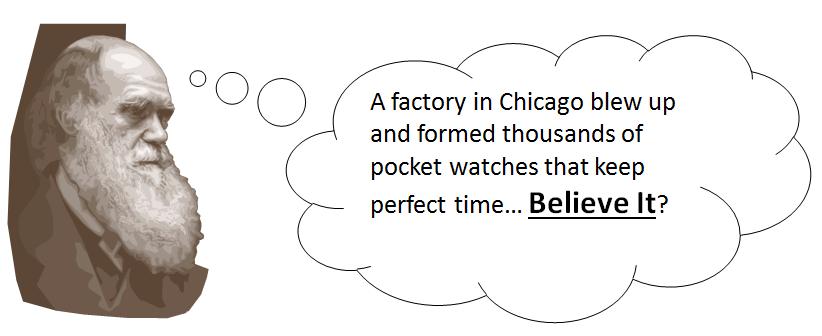 Darwin_Watches