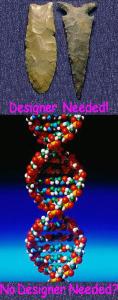 Designer needed